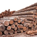 ◎輸入木材、価格と納期の厳しさ増す=米国住宅市場や海運など要因◎